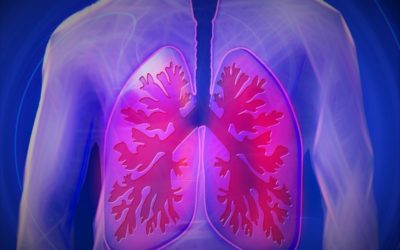 The Science Inside – Tuberculosis