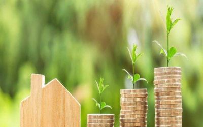 Business Buzz: Money Saving Tips for Festive Season