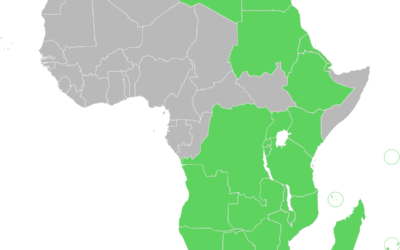 Business Buzz: The State of the African Economy and free Trade Zones