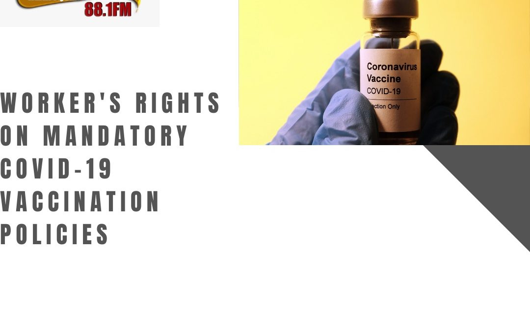 Law Focus – Worker's rights on mandatory COVID-19 vaccination policies
